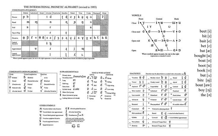 Consonant Chart Filled In IPAs copypng 800×397 pixels Interesting - copy blueprint detail in short crossword clue