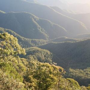 Near Maleny - Sunshine Coast - Australia