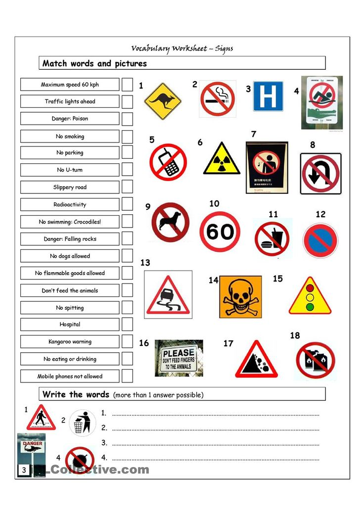 Vocabulary Matching Worksheet - Signs