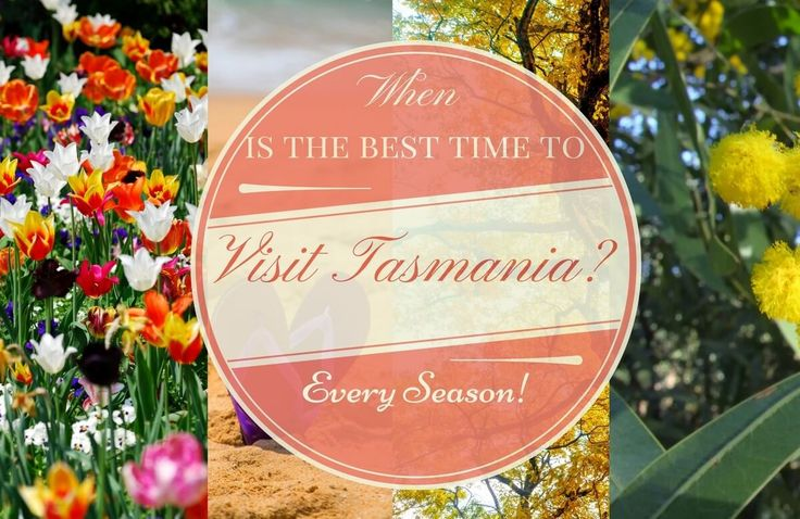 Tasmania may be a small island state but there is so much to see. After 5 weeks there we still did not see everything - We drove over 5,000 km's.