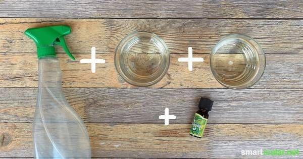 Universalreinger aus Essig: Einfach und schnell Selbermachen So stellst du den Essigreiniger her Um etwa 750 ml Essigreiniger herzustellen, benötigst du: 2 Tassen weißen Essig 1 Tasse Wasser 20 Tropfen ätherisches Eukalyptus-, Teebaum-, oder Lavendelöl 1 Sprühflasche, z.B. eine leere, alte Reinigerflasche Durch die Zugabe eines der ätherischen Öle duftet dein Reiniger angenehm. Außerdem haben diese drei Öle eine antibakterielle, antivirale und antifungale Wirkung.  Quelle…