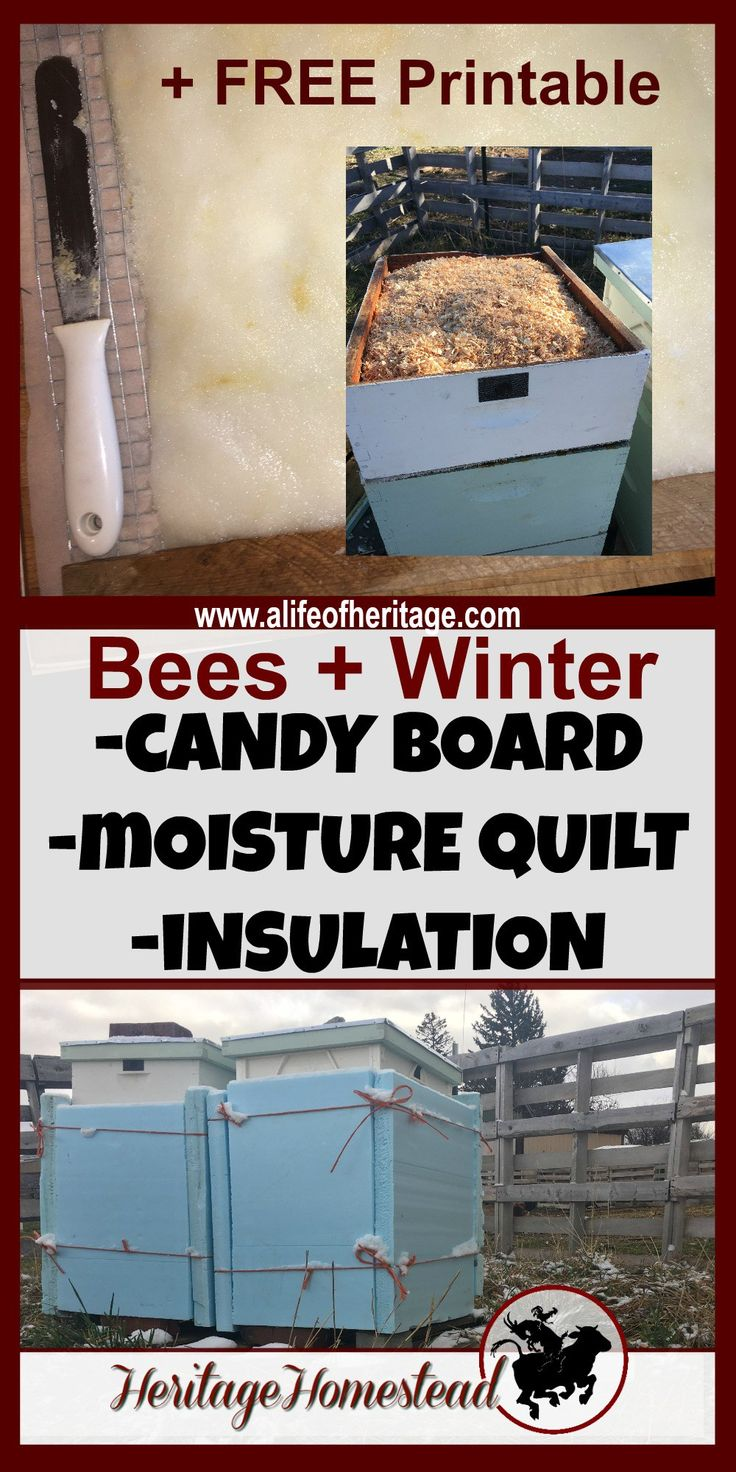 How to make a moisture quilt for a langstroth hive honey - How To Get Your Bees Through Cold Wet Winters Moisture Quilt Candy Board And Insulation