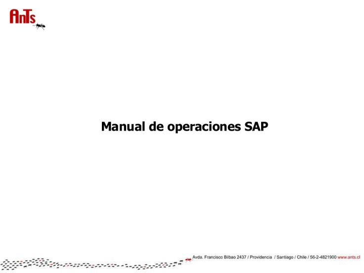 Manual SAP Business ONE