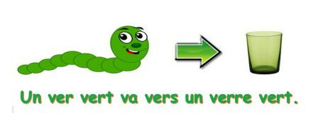 French With Shelley | Homographes et homophones...