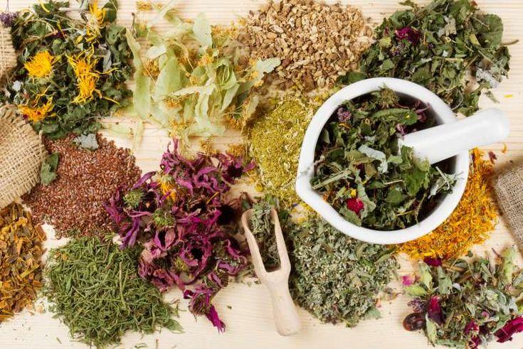 12 βότανα που θα σας βοηθήσουν να συνέλθετε από τις καταχρήσεις