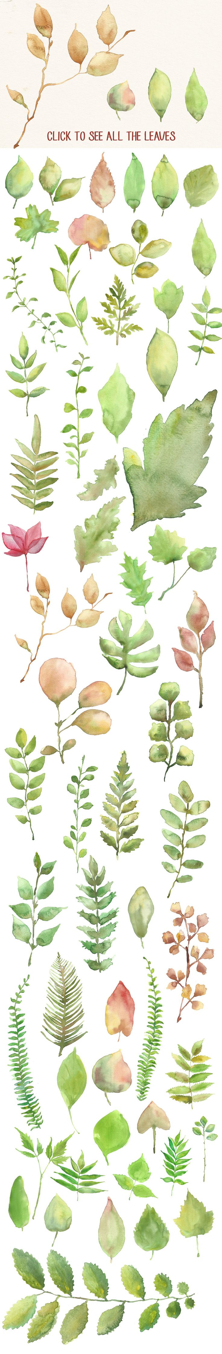 Watercolor Flowers and Leaves Pack by Anna Ivanir