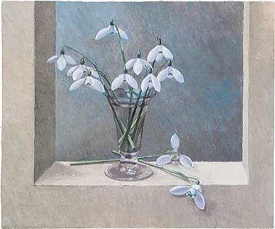 Snowdrops 'Mrs McNamara' by John Morley