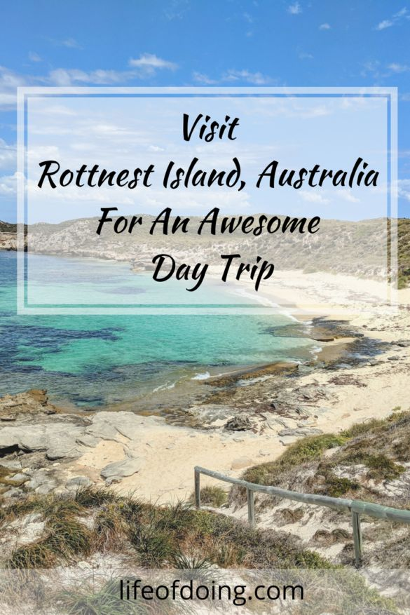Visit Rottnest Island in Australia For An Awesome Day Trip