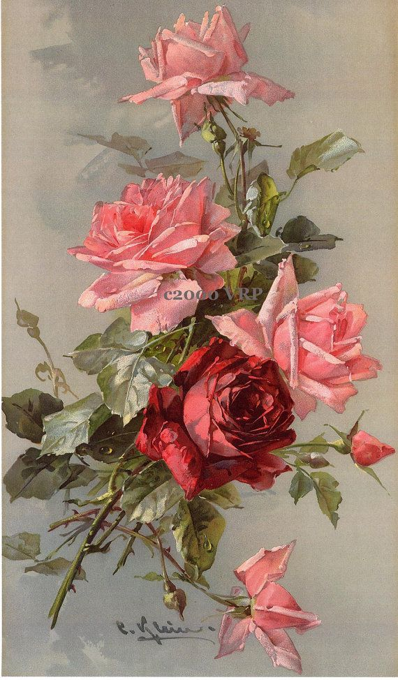 PRINT FREE SHIP French Victorian Roses Delights Catherine Klein Half Yard Long Rose
