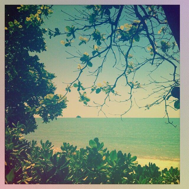 Palm Cove Australia