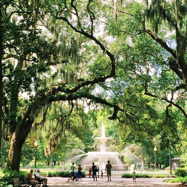 5 Best Photo Spots in Savannah