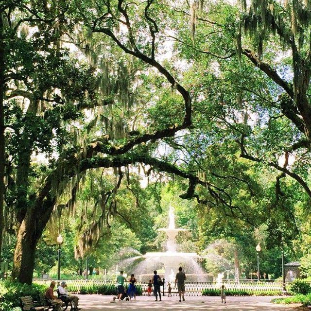 5 Best Photo Spots in Savannah