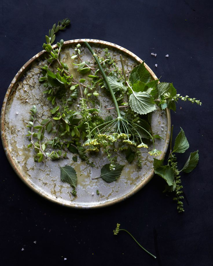 microgreens // hungry ghost food & travel