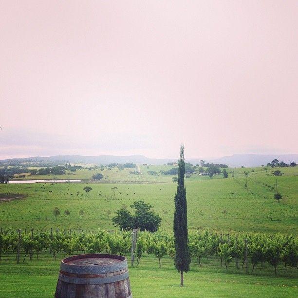 Cupitt's Winery in Ulladulla, NSW