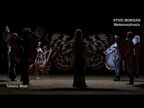 Stive Morgan - Metamorphosis - YouTube