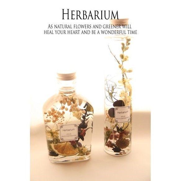 アトリエでは多くの人に花や自然を沢山の方に楽しんでもらいたいそんな想いでアトリエのオリジナルハーバリウムを心を込めてお作りしました。「ボタニカルハーバリウム 」size W7xD4xH14cmお家でも気軽に楽しめる自然な感じが作ってみたいとお作りしました。とてもレッスンなどでも人気なカラー!ラークスバー・ゴアナクロウ・ペッパーベリー・バイオレッドユウカリや自然の実などを組み合わせたマリアージュになります。とてもアち着いた雰囲気のハーバリウムですよ!光にあたるととても綺麗で癒されるハーバリウム!ご自分用やちょっとしたお友達や家族にも喜んでもらえるものとなりますように....***ご購入する前のご注意****一点づつ手作りのため、自然のものを使用しておりますため、色合いや形にはお写真をは違う場合もございます。*長い間鮮やかさをお楽しみ頂く方には、直射日光のあたる場所に長期間放置するのはアトリエではお勧めできません。*他サイトと同時出店しておりますので、先に購入された方を優先しておりますのでご了承下さい。#プレゼント#贈り物…