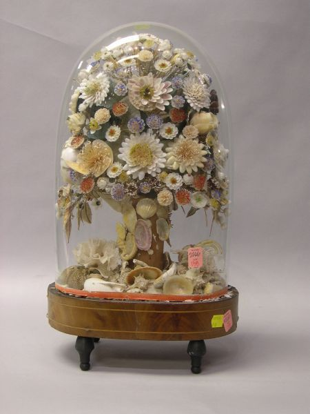 VICTORIAN SEASHELL FLORAL ARRANGEMENT UNDER A GLASS DOME