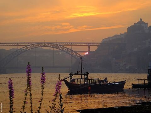 Foto de I Love Porto, Douro e Norte.