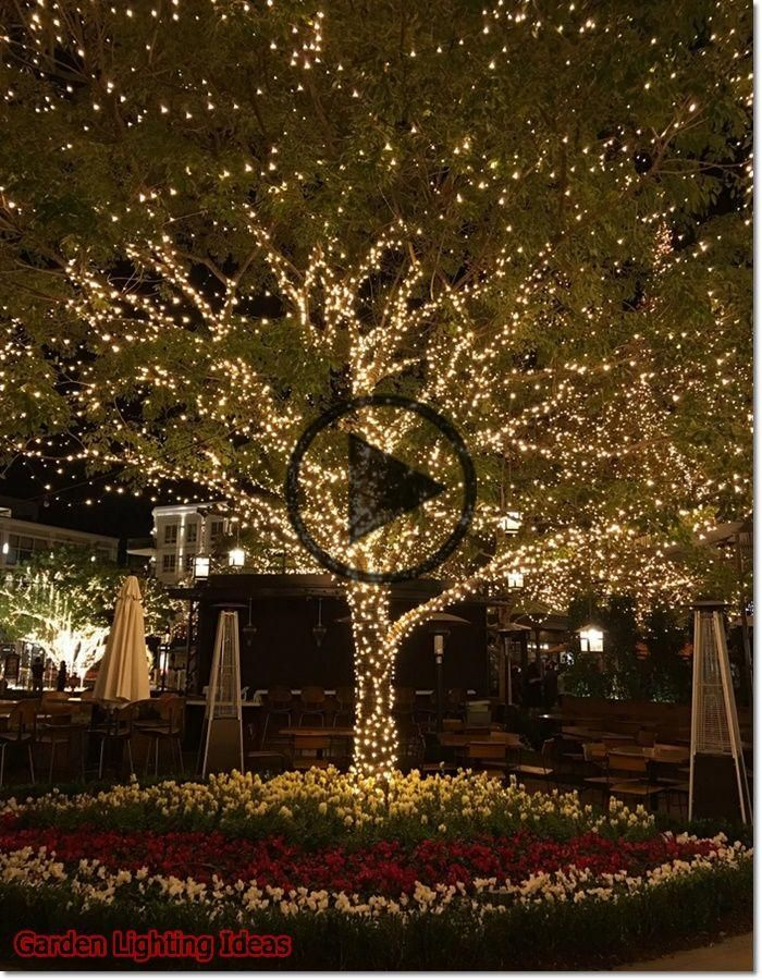 Garden Lighting Ideas 2020 What Is The Best Outdoor Light In 2020 Outdoor Tree Lighting Outdoor Backyard Outdoor Christmas Lights