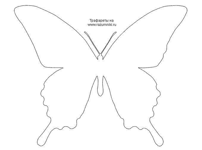 шаблон бабочка - Поиск в Google