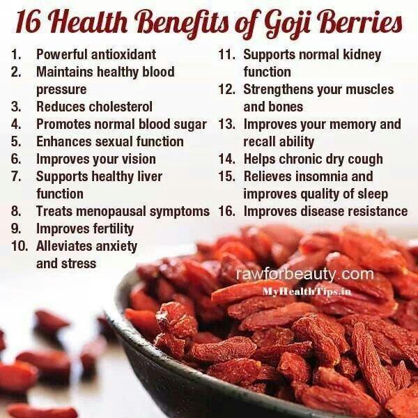 The Health Benefits of Goji Berries