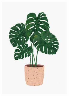 Bamboo Illustration Drawing Behance
