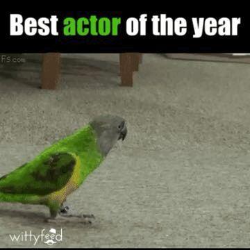 Genialer Schauspieler