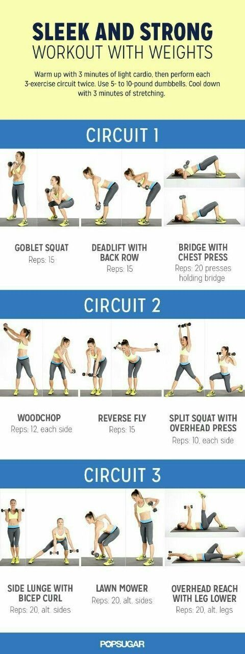 Looking for an effective circuit workout? This workout with weights is perfect…