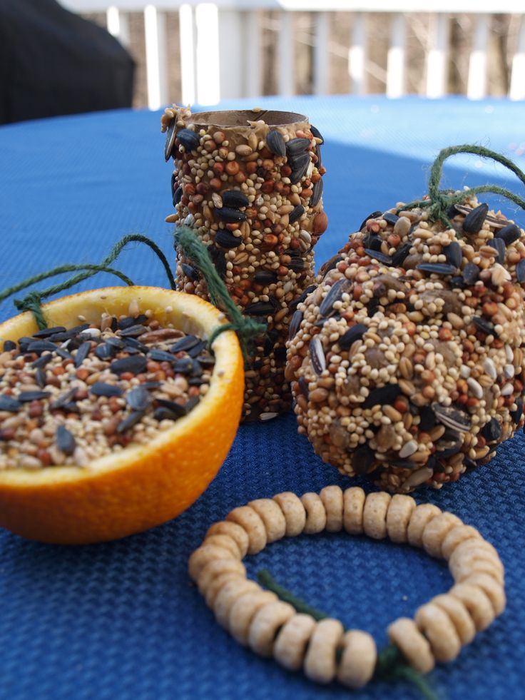 Easy Biodegradable Bird Feeders. For eggs and birds learning cycle