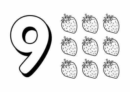 1531 best развивашки счёт images on Pinterest | Matemáticas, Escuela ...