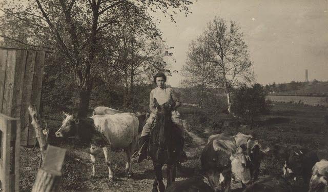 Κεντάκι (1916)