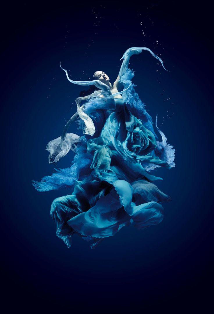 Underwater Photography by Santiago Esteban