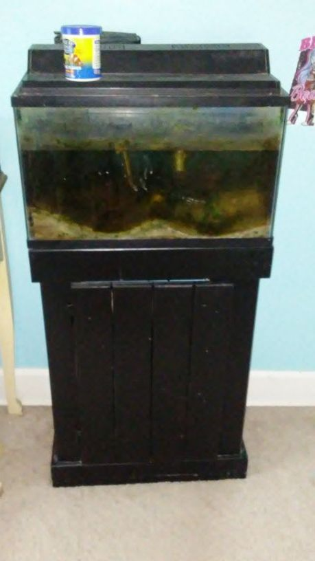 Best 20 fish tank stand ideas on pinterest for Fish tank stand 10 gallon