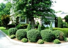 corner lot landscaping - Google Search