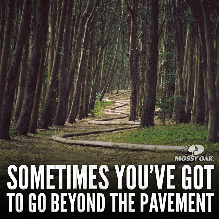 Woods Quotes: 46 Best Images About Mossy Oak Quotes On Pinterest