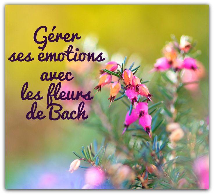 Tweet Naturelles, les préparations florales aident à mieux gérer les émotions du quotidien et à se sentir en harmonie avec soi-même. A chaque émotion, sa fleur de Bach. Et pour connaître celle qu'il convient d'adopter, il est important d'identifier l'état...