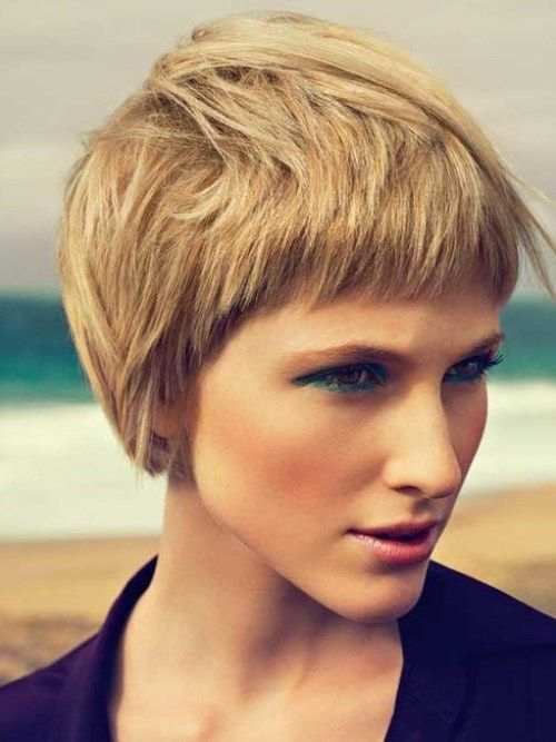thick hair short haircuts 1000 images about hairstyles 2017 on 3050 | 79a2f7915c9188086004b0cc9f163cbc