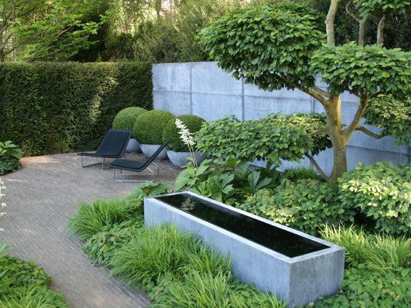 toms garden