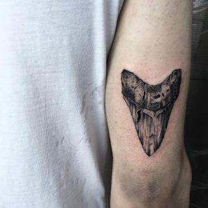 Shark tooth fossil tattoo by Anastasia Slutskaya