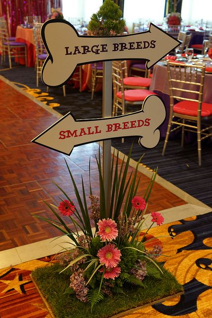 Dog theme bat mitzvah Hotel Marlowe seeting sign | Flickr - Photo Sharing!