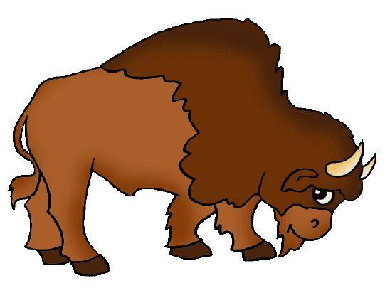 Plains Indians - Buffalo Illustration