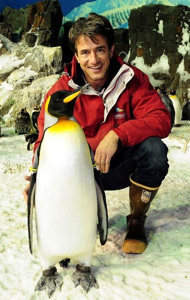 Dermot Mulroney With Penguins