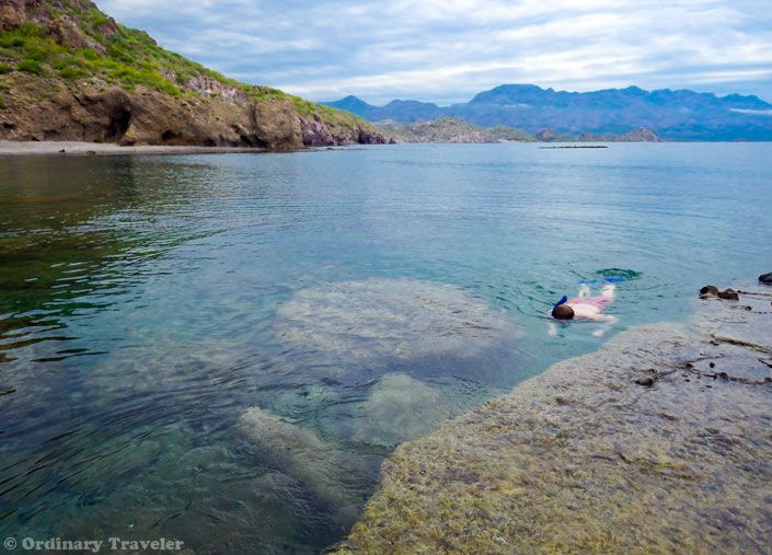 25 best ideas about loreto on pinterest baja california for Loreto mexico fishing