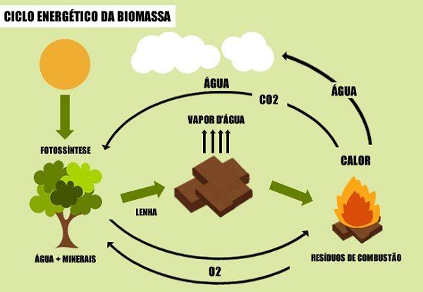 Biomassa A 3ª Fonte De Energia Mais Usada No Brasil Autossustentável Biomassa Energia Renovável Fontes De Energia