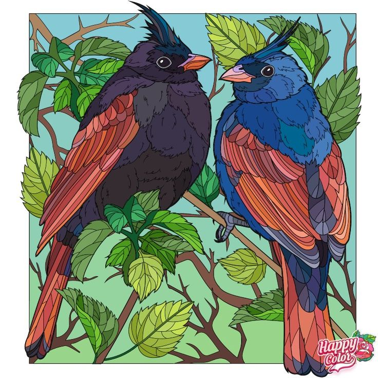Pin by м on раскраска in 2020   Happy colors, Bird, Art