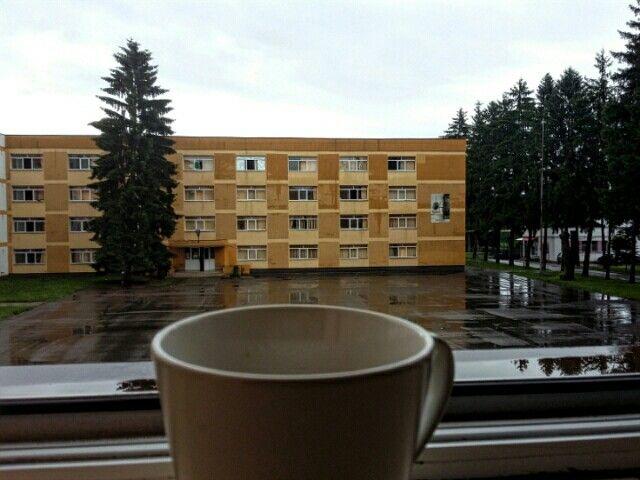 #rain #coffee #cozy ☔⛈☕❤🌲
