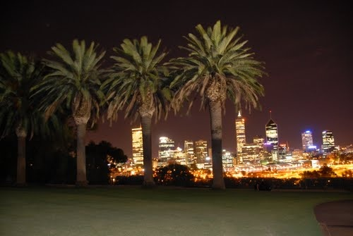 Light-painted trees in foreground of cityscape