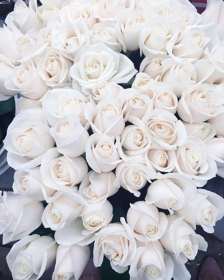 дополнительную плату картинки охапка белых роз с кольцом вас есть
