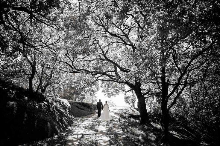 Wedding Photography | Lovely pose #wedding #photography #inspiration