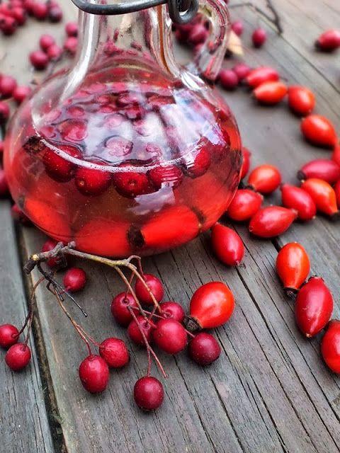 szeretetrehangoltan: Erősítő elixír: almaecet+méz+....